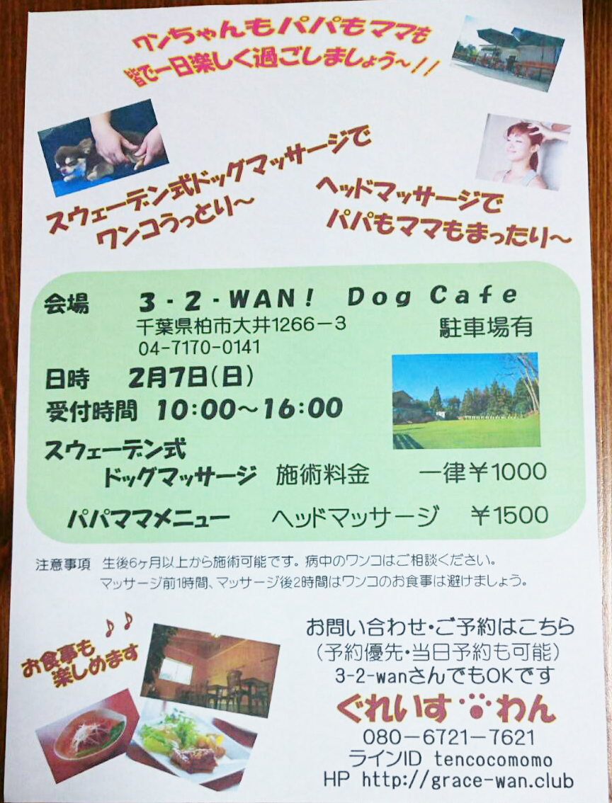 3−2−WAN! Dog cafe