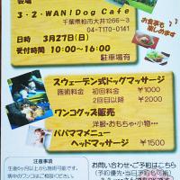 春のワンコマルシェ〜3−2−WAN! Dog café
